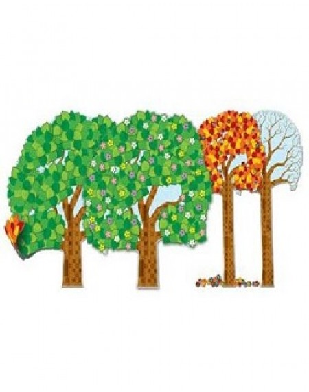 Bulletin Board Set : Big Tree Year Round