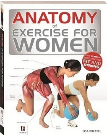 Anatomy Of Exercise For Women