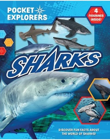 Pocket Explorers : Sharks