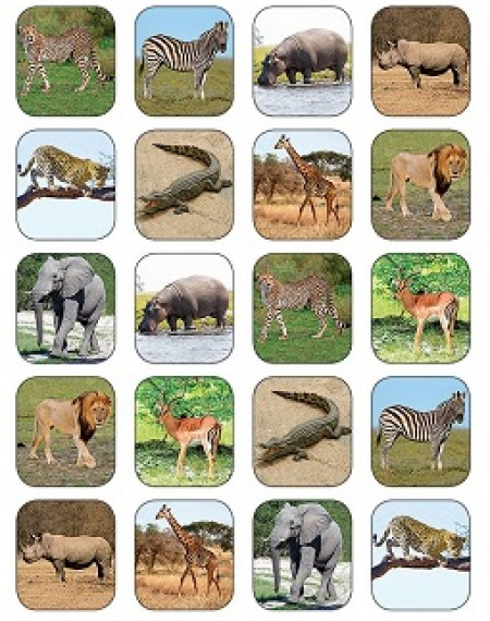 Stickers : Safari Animals